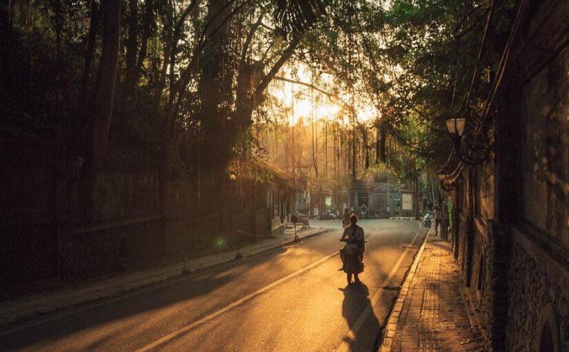 Scooter sous la canopée à Ubud